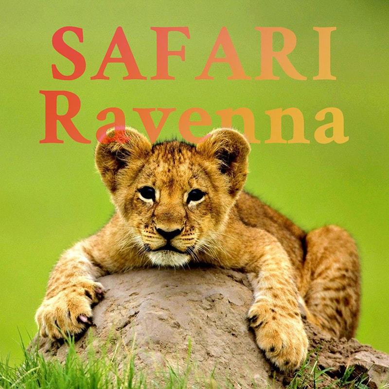 FamilienHotel Italien - Safari